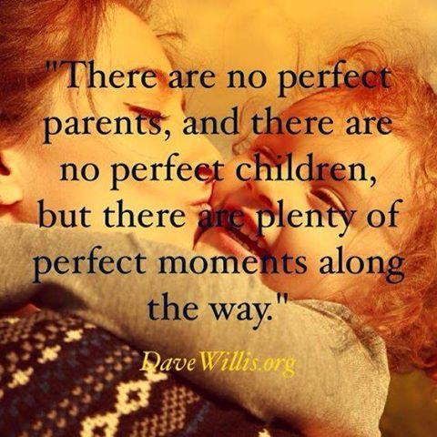 familias perfeitas